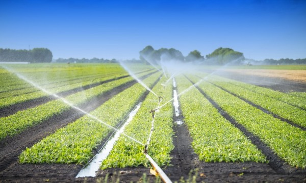 Mahindra EPC Irrigation announces a flat Q3 PAT at Rs 7.70 crore